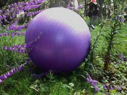 Birth-ball-in-garden.web