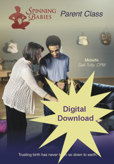 Parent Class Digital Download