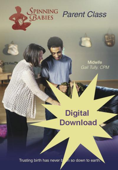 Parent class video digital download | in pregnancy | pinterest.