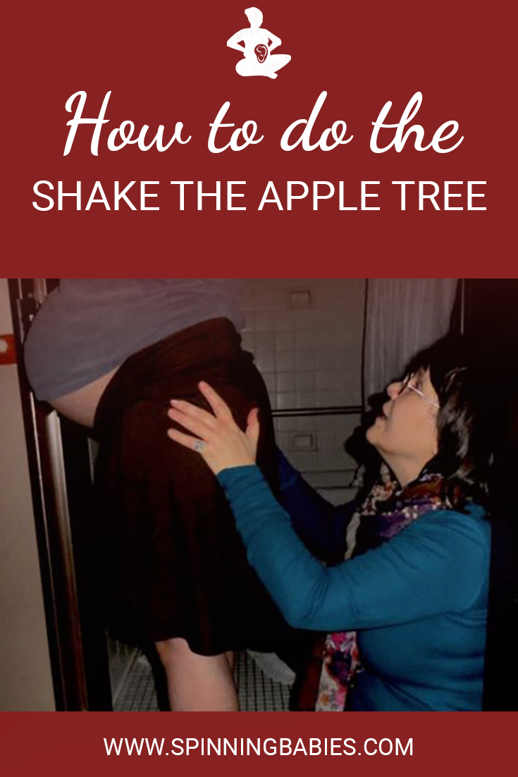 How to do the Shake the Apple Tree